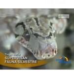Supervisan zoologicos y zoocriaderos en Tingo Maria (video)