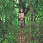 Advierten que existe confusión en consultas sobre Ley Forestal