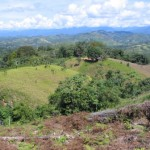 Narcotráfico vierte 15 millones de litros de insumos químicos en los ríos de la Amazonía cada año