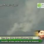 Voraz incendio arrasa cientos de hectáreas de bosques en el VRAE (video)