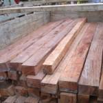 Policías de Aucayacu incautaron cerca de 6 mil 700 pies de madera tornillo ilegales con destino a Lima