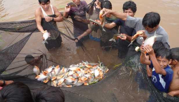 Promueven crianza de truchas en monz n inforegion for Crianza de truchas en estanques