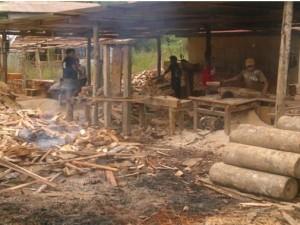 Decomisan 6 mil 300 pies tablares de madera ilegal en Satipo