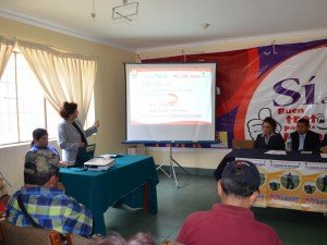 Más de 100 casos de casos de cáncer de estómago hubo en Ayacucho en el año 2013