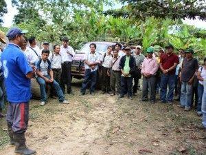 Productores de Satipo participaron en escuela de campo en Río Tambo