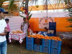 Hoy se inicia XXX Feria Regional Agropecuaria y Festival de la Naranja en Satipo
