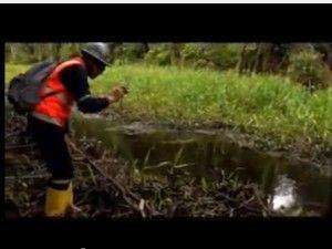 Reafirman que comunidades nativas no fueron afectadas por derrame de petróleo (video)