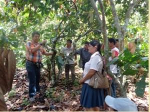 Cacaoteros de Satipo participaron en curso de manejo de cacao