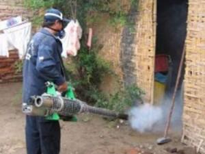 Se incrementan casos de chikungunya y dengue en Cusco