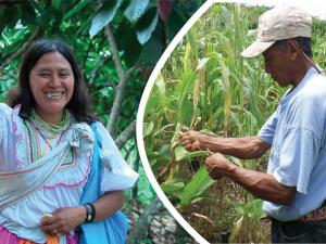 Divulgan trabajos de periodismo ambiental en Lamas