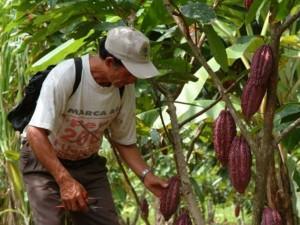 Gorehco y UNODC promueven alianza en favor del desarrollo de Huánuco