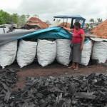Aguaytía: Se debaten medidas para reducir contaminación por actividad carbonera