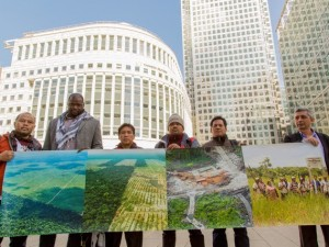 Piden retiro en Bolsa de Londres de empresa implicada en deforestación