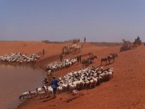 El déficit del agua llegaría a 40% en 2030