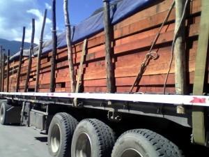 Tingo María: PNP incautó 29 602 pies tablares de madera
