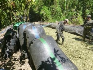 Vraem: PNP incineró más de 3 000 kilos de hoja de coca seca