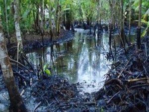 Loreto: OEFA inicia investigaciones ante nuevo derrame de petróleo