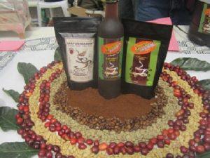Vraem: INIA promueve la producción cafetalera en Huamanga