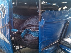 Aucayacu: PNP decomisó 80 kilos de hoja de coca ilegal