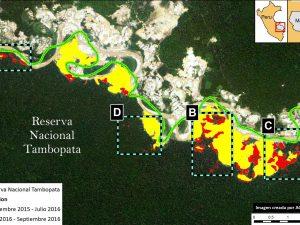 Deforestación de reserva de Tambopata llega a las 450 hectáreas