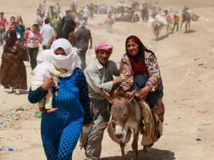 Anuncian iniciativa para asistir a refugiados y comunidades de acogida en zonas rurales
