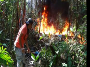 Huánuco: Policía destruye laboratorio clandestino de droga