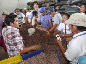 Satipo: Productores son capacitados en certificación orgánica y control interno