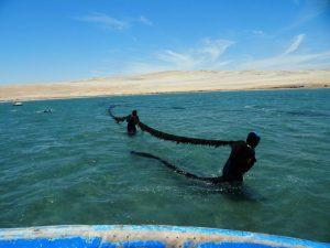 Ica: Realizan intervención contra pesca ilegal en Reserva Nacional de Paracas