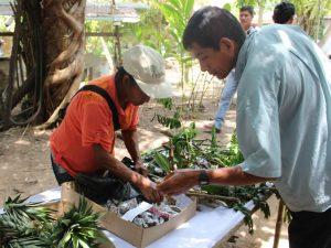 Puerto Maldonado: Organizan Feria Regional de semillas agrícolas forestales y medicinales