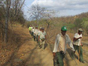 Continúan labores para sofocar incendio forestal en el Parque Nacional Cerros de Amotape
