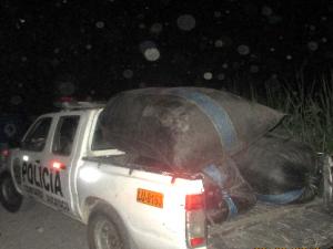 Leoncio Prado: PNP decomisó 500 kilos de hoja de coca
