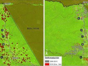Madre de Dios: Incendios degradan bosque en la Amazonía Sur