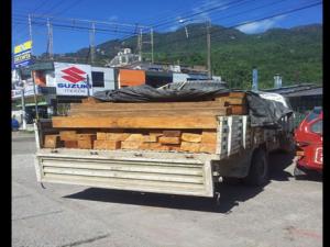 Tingo María: PNP incautó 3 mil pies tablares de madera