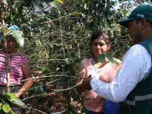 Junín: Benefician a cerca de 2 mil familias con Escuelas de Campo de Agricultores