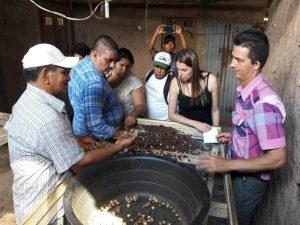 San Martín: Productores de Colombia y Costa Rica realizaron pasantía a cultivos de sacha inchi