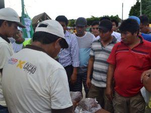 Aucayacu desarrolló el Primer Festival del Cacao