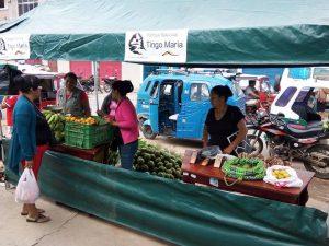 Feria agrícola ofrece productos de calidad del Parque Nacional Tingo María
