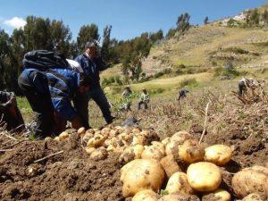 Dan licencias de uso de agua a más de 2 300 agricultores de Huancavelica