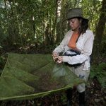 Facilitan investigación ciudadana en áreas naturales protegidas