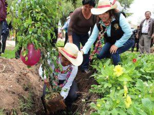Ayacucho: Siembran 300 plantones en Jesús Nazareno