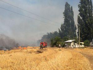 Chile: Nuevo incendio forestal arrasó con 3 000 hectáreas