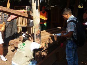 Decomisan cargamento de madera ilegal en Tingo María