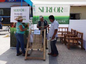 Fomentan aprovechamiento sustentable del bambú en Piura