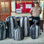 Leoncio Prado: Policía decomisa 100 kilos de hoja de coca ilegal