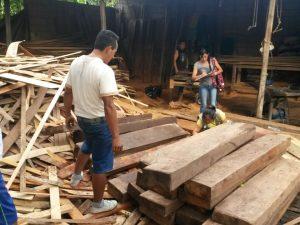 Policía decomisó producto forestal en Tingo María