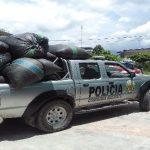 Tingo María: Policía decomisó 400 kilos de hoja de coca ilegal
