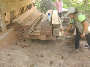 Policía incautó producto forestal ilegal en Tingo María