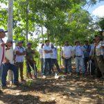 Ucayali: Fortalecen capacidades en materia de cultivo del cacao