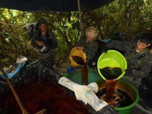Vraem: Policía destruyó dos pozas de coca ilegal