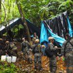 Vraem: Policía destruyó pozas de coca ilegal en Cusco y Ayacucho